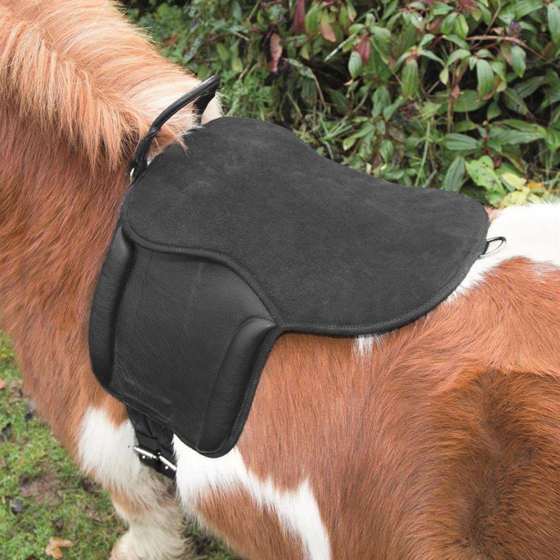 Shires Aviemore PONY Pad Unisexe Sellerie En Acier Inoxydable poneys