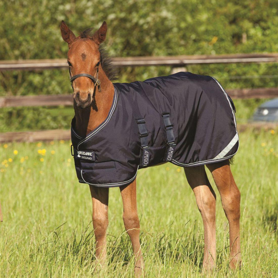 Amigo Foal Rug Horses Riding Body Cover Accessory