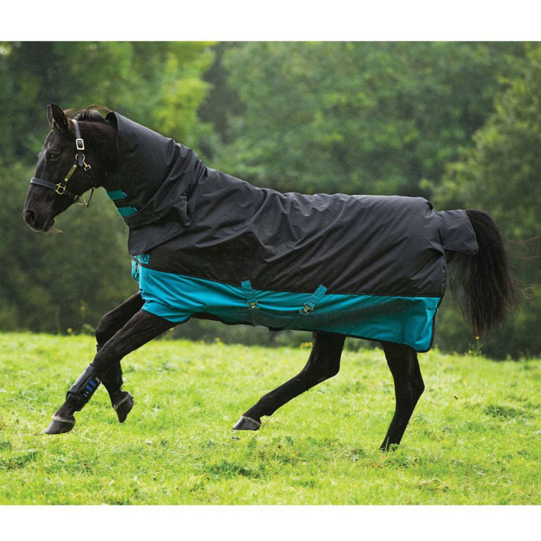 Mio Unisex All In One Medium Turnout Horse Rug Waterproof Breathable Classic