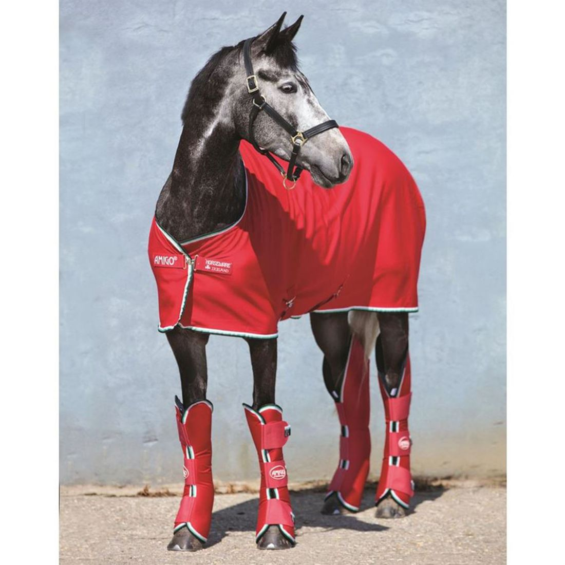 Amigo Unisex Horse Rug Jersey Cooler Robinsons New