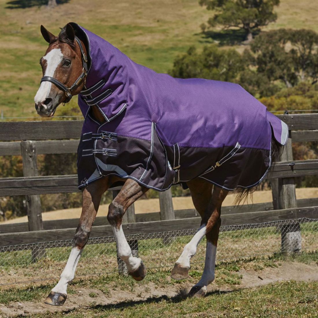 Details About Weatherbeeta Comfitec Plus Dyn Combo Med Lite Horse Rugs Breathable Equestrian