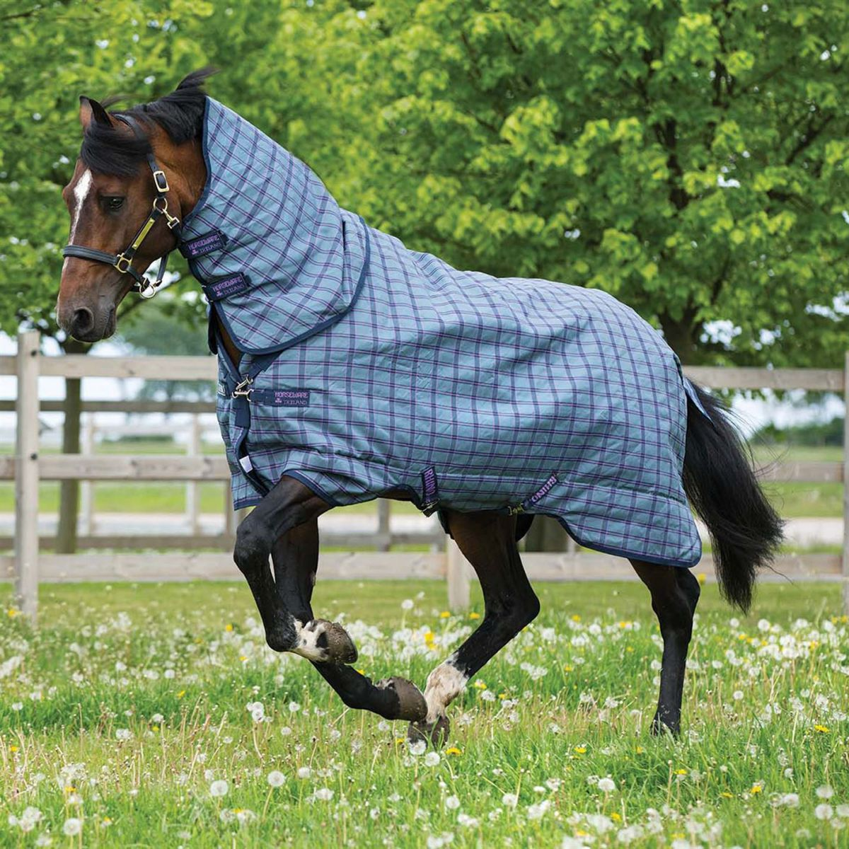 Rhino Plus Medium 200g Horse Rug Waterproof Breathable Hooded Robinsons New