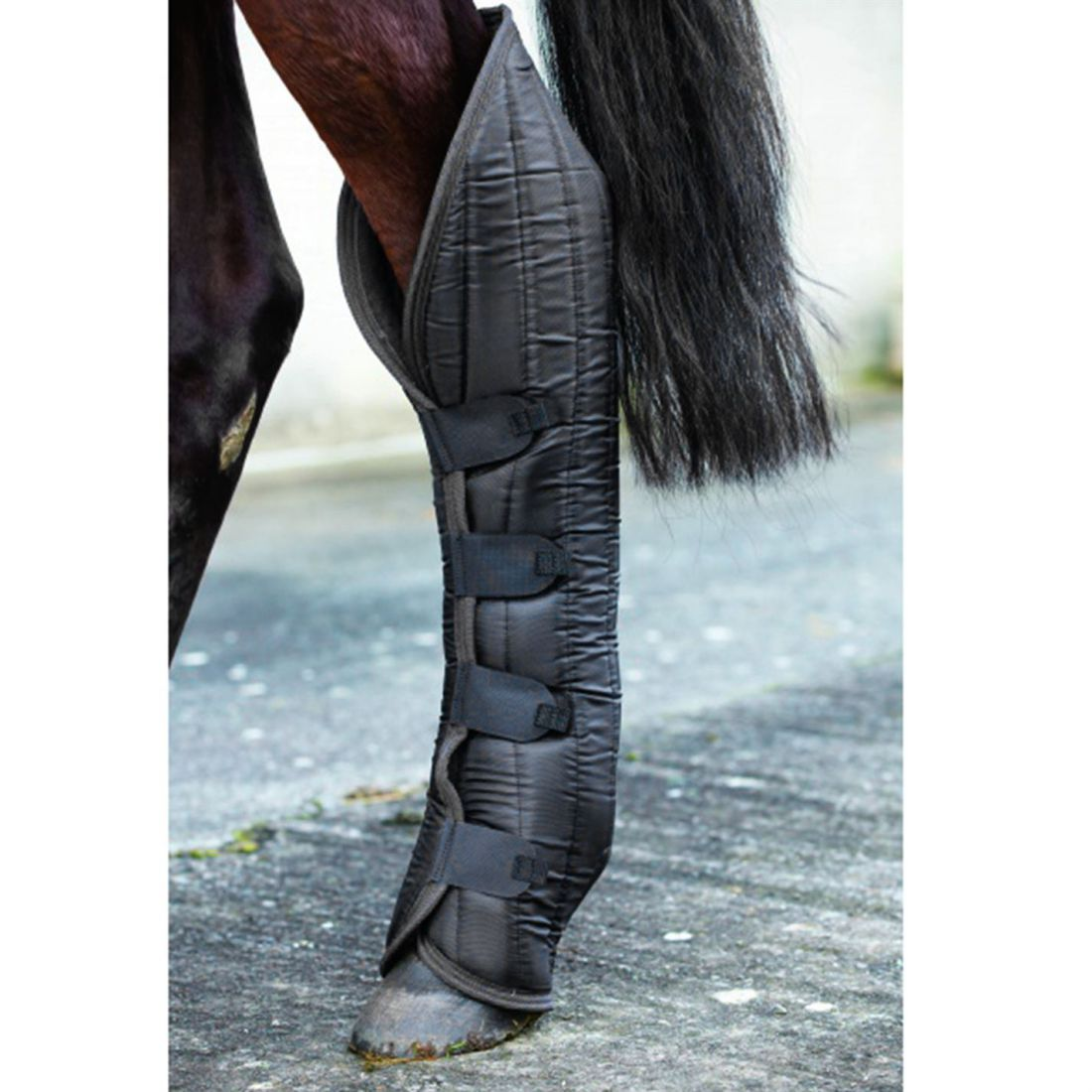Mio Travel Boots Unisex Horse Legwear Water Resistant Quilted