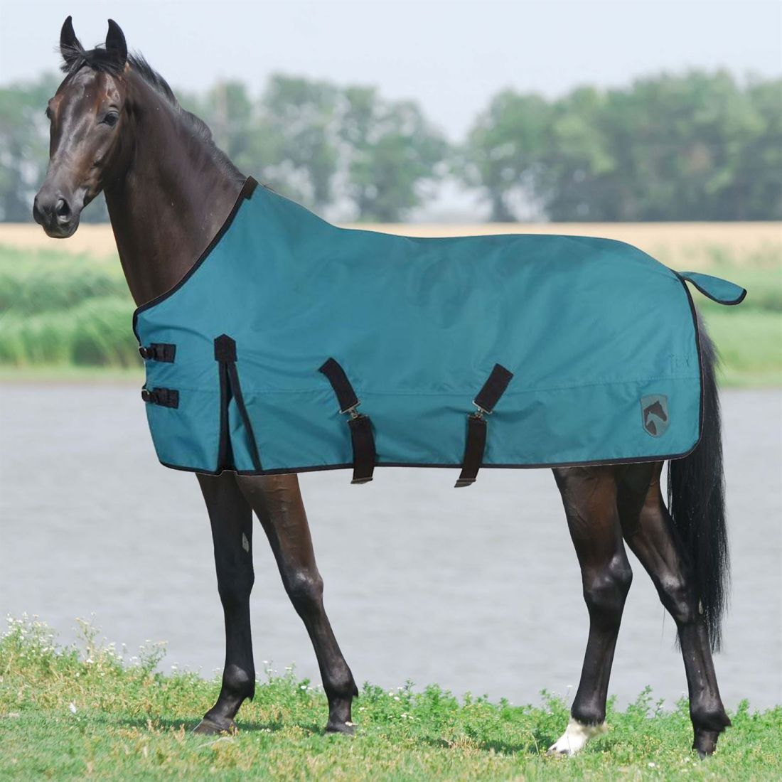 Requisite Classic 600D Standard Lite Turnout Equestrian Breathable Accessories