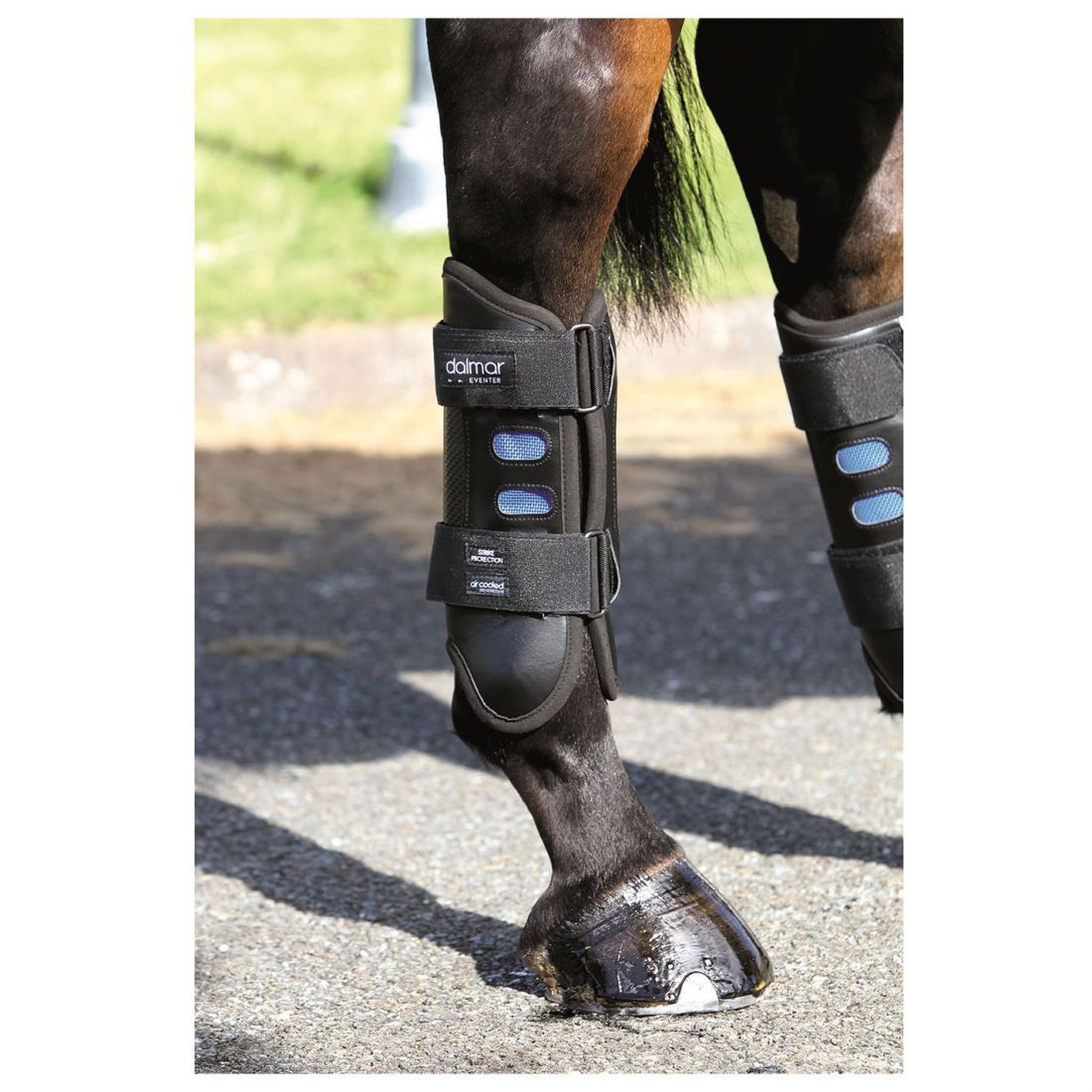 Dalmar Eventer Hind Boot Unisex Horse Legwear Warm