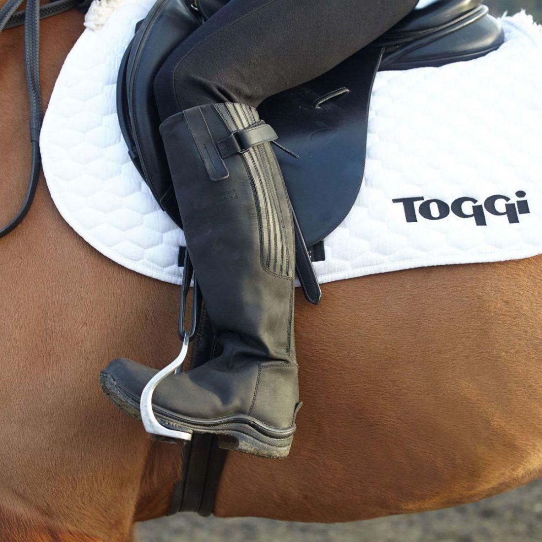 Toggi LINEA DONNA STIVALI CAVALLERIZZA ALTI Calgary Scarpe Zip Impermeabile Flessibile Equestre