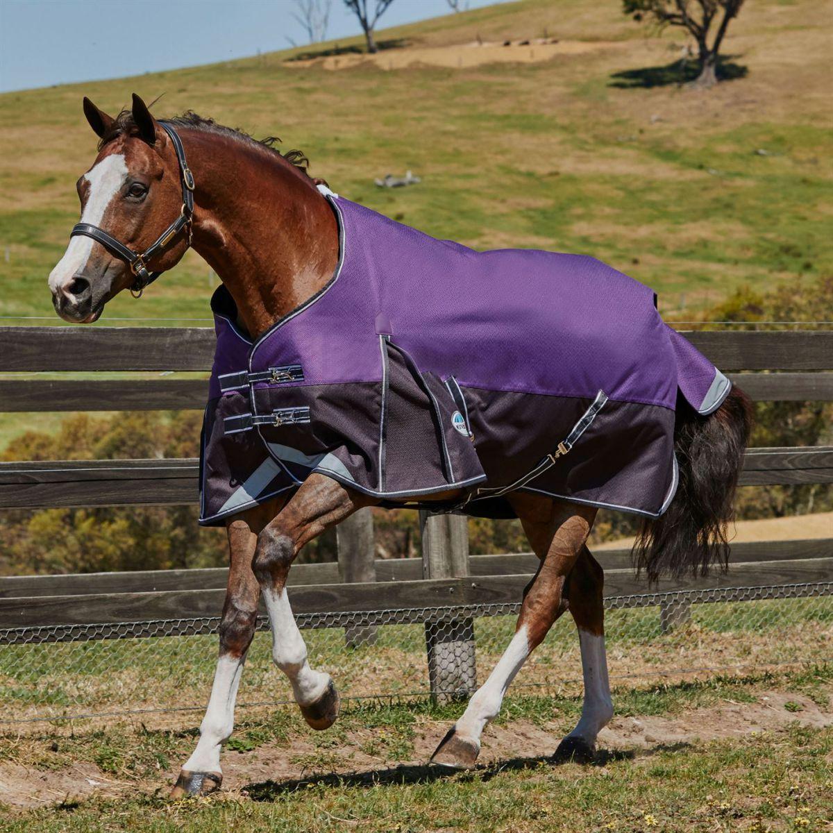 Weatherbeeta ComfiTec Plus Dynamic Stardand Medium Unisex Horse Rug Water