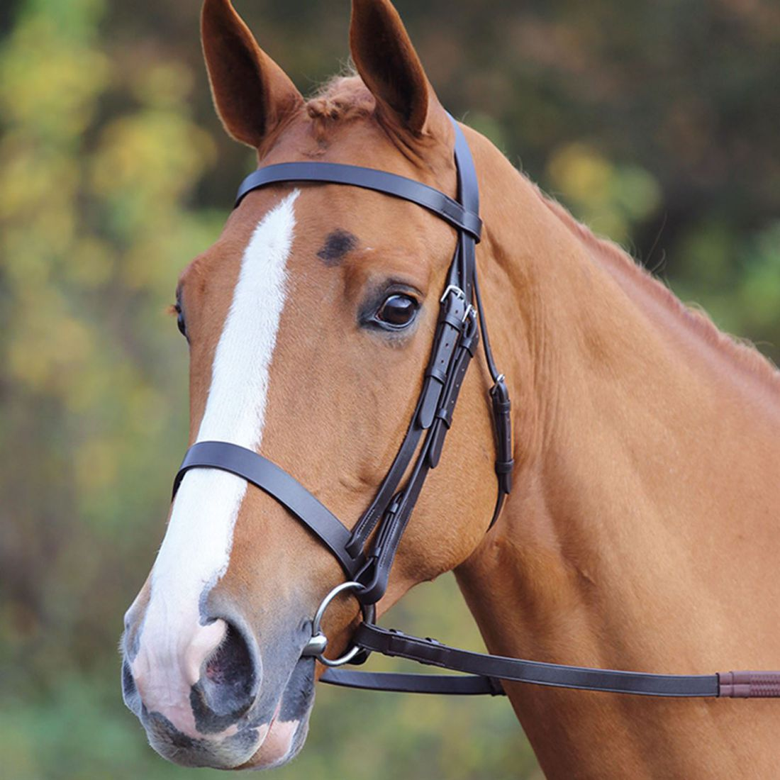 Shires Aviemore Plain Bridle Unisex Bridlework Stainless Steel Classic
